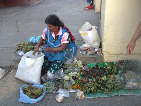 Street vendor at Oaxaca local market