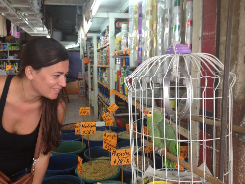 Making new friends in Cholula, Puebla
